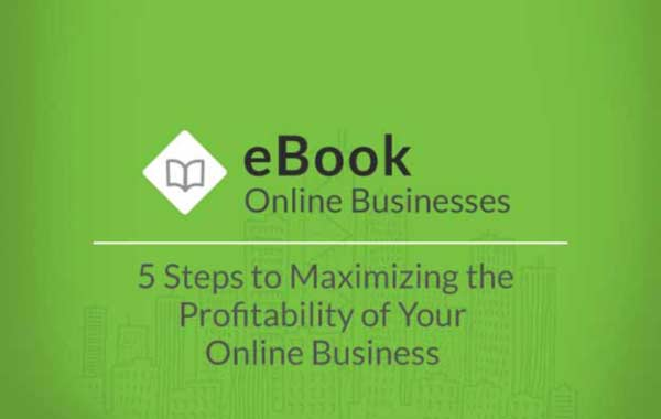 ebook-online-businesses-5-steps-5-Steps-to-Maximizing-the-Profitability-of-Your-Online-Businesss